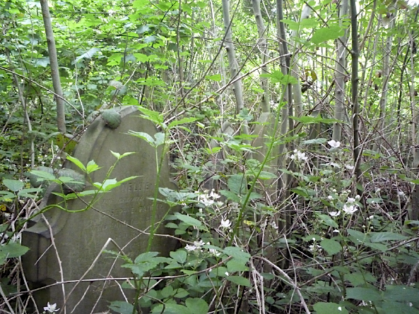 Gravestones, Brockley Cemetery, Lewisham - June 2012