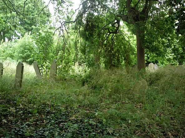 Brockley Cemetery, Lewisham, London - June 2012