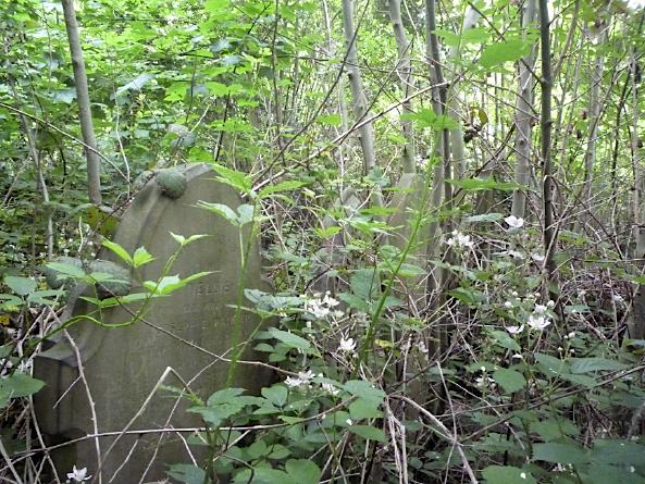 Gravestones, Brockley Cemetery, Lewisham - June 2012