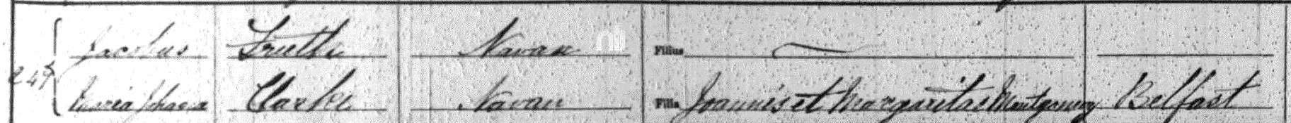 Entry from marriage register for Jacobus Freeth and Maria Johana Clarke, 5 February 1877, Roman Catholic Chapel of Navan